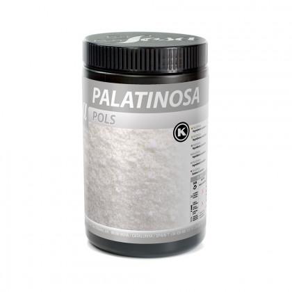 Palatinosa en Polvo (900g), Sosa