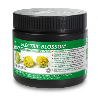 Electric Blossom Liofilizado (20g-290u), Sosa