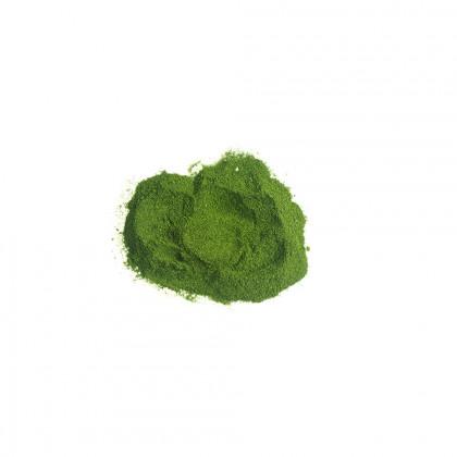 Planctoplus en polvo, Sosa (50 g)